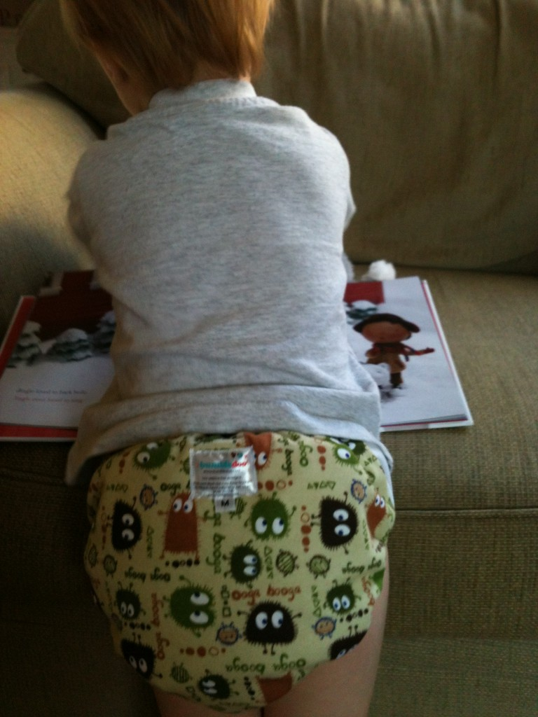 Bum Covered Diapers Bumble Pants
