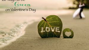 20 Ideas & Tips to Be Green and Eco-Friendly on Valentine's Day from gifts to kids.