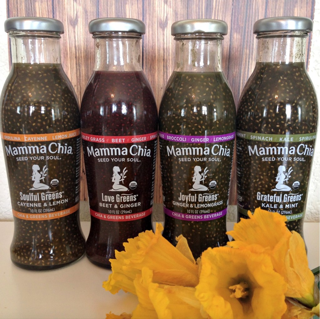 Mamma Chia Benefits of Chia Seeds