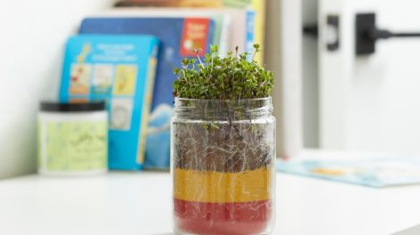 Terrarium Planter for kids