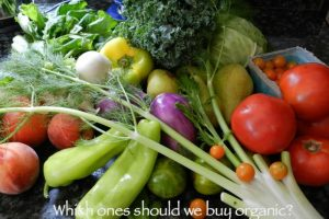 Which fruits and veggies should we buy organic because of higher pesticides?