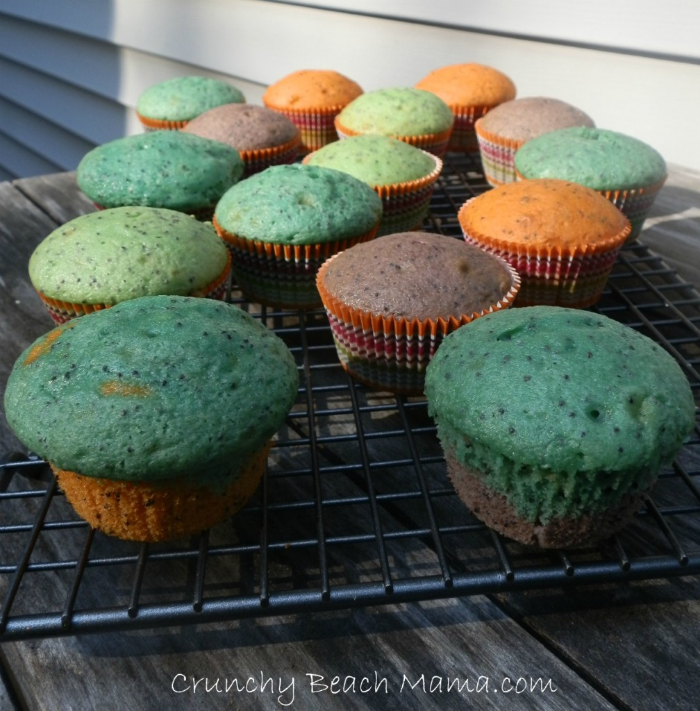 Bright and Colorful Lemon Poppyseed Muffins. Perfect for Spring!