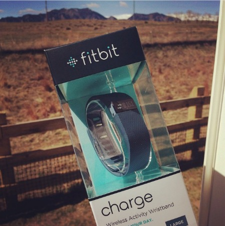 The pic I posted last Spring when I first started using my FitBit and I STILL wear it daily!