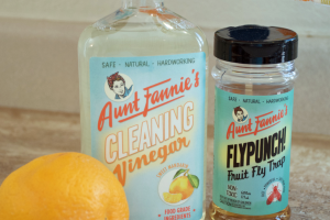 Aunt Fannie's Cleaning Vinegar and FlyPunch